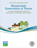 Voluntary Guidelines on the Governance of Tenure